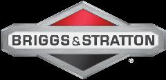 10A902-2011-B1 - Briggs & Stratton Vertical Engine